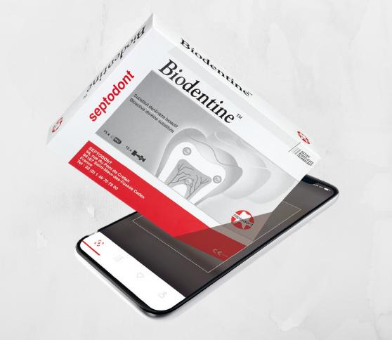 Lancering Companion App