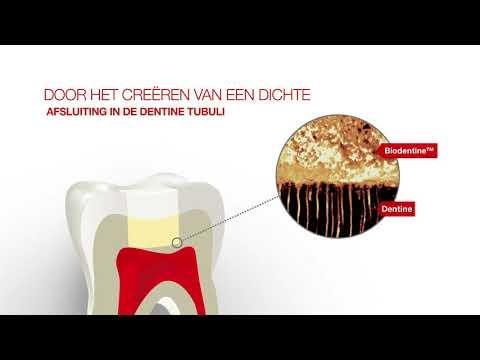 https://www.septodont-nl.be/media/catalog/product/h/q/hqdefault_20.jpg